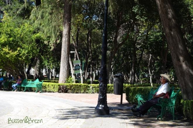 Queretaro Park Mann auf Bank