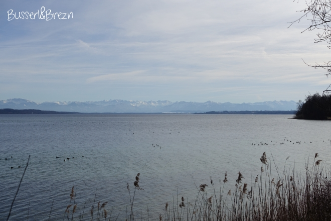 Starnberger See Blick auf die Alpen