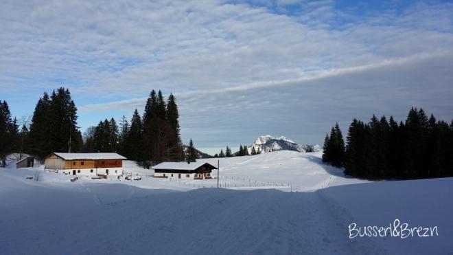 Langlaufloipe Blick auf die schneebedeckten Berge