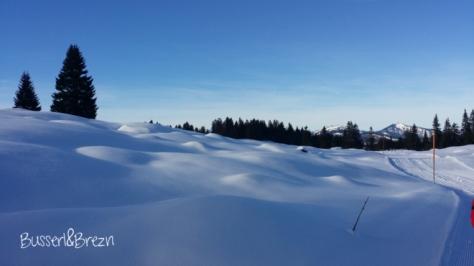 Langlaufloipe Panorama