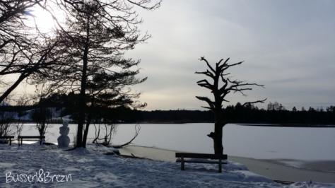 Osterseen Blick auf den See
