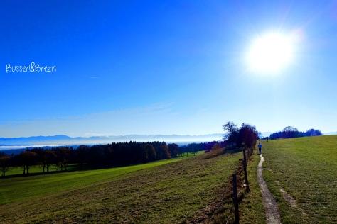 Spaziergang Ilkahöhe_04